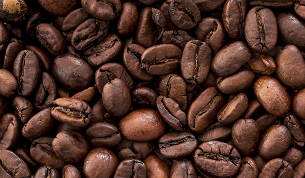 Coffee_Cultivation_Disinfection1.jpg