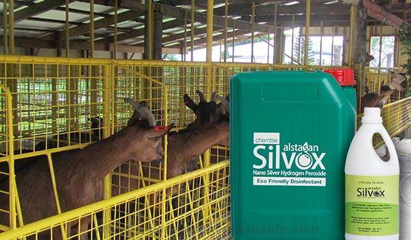 Goat_Pen_Sanitation1.jpg