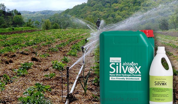 irrigation_water_disinfection1.jpg